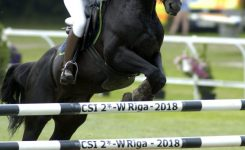 For the 16th year running Moduls Engineering supports Show Jumping World Cup Rīga Leg Grand Prix